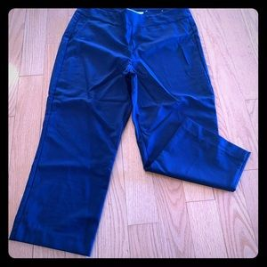 Blue Alfred Sung crop pants